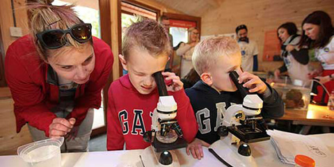 Children using microscopes