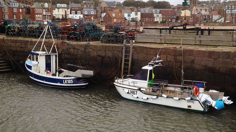 Next steps for the Future of Our Inshore Fisheries